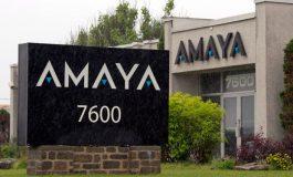 Amaya заявляет о весьма успешном прошедшем годе